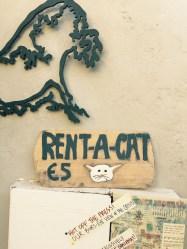 Rent a cat, Santorini, Thira, Greece