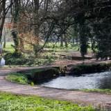 devon life cullompton magazine lifestyle photographer photography herefordshire 2730