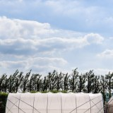 Haygrove Limited, Ledbury, Herefordshire farming agriculture photographer photography 2572