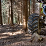 Forestry, fine art photography photographer herefordshire 4233