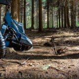 Forestry, fine art photography photographer herefordshire 4242