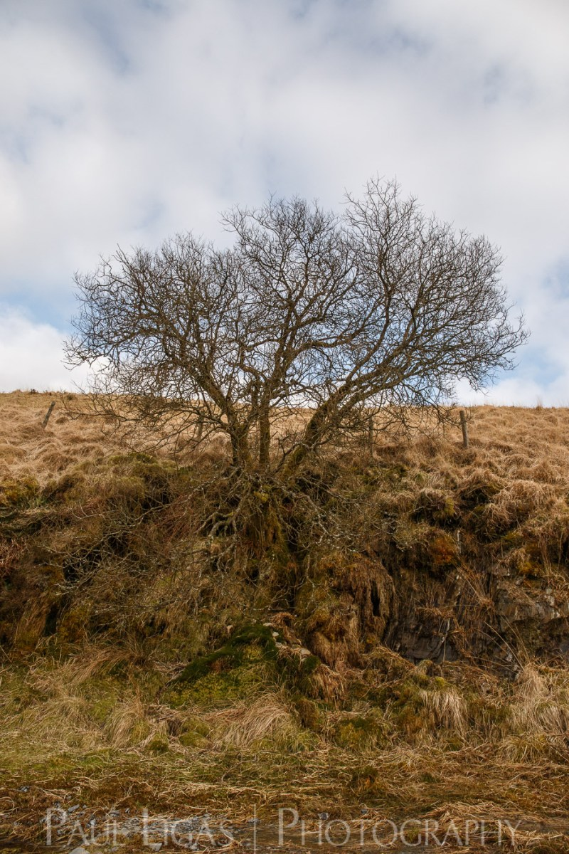 Elan Valley, Wales landscape nature photographer photography herefordshire 3230