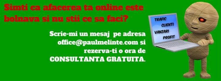 consultanta marketing online