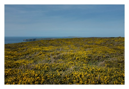 High cliff to Park Head and Trevose Head