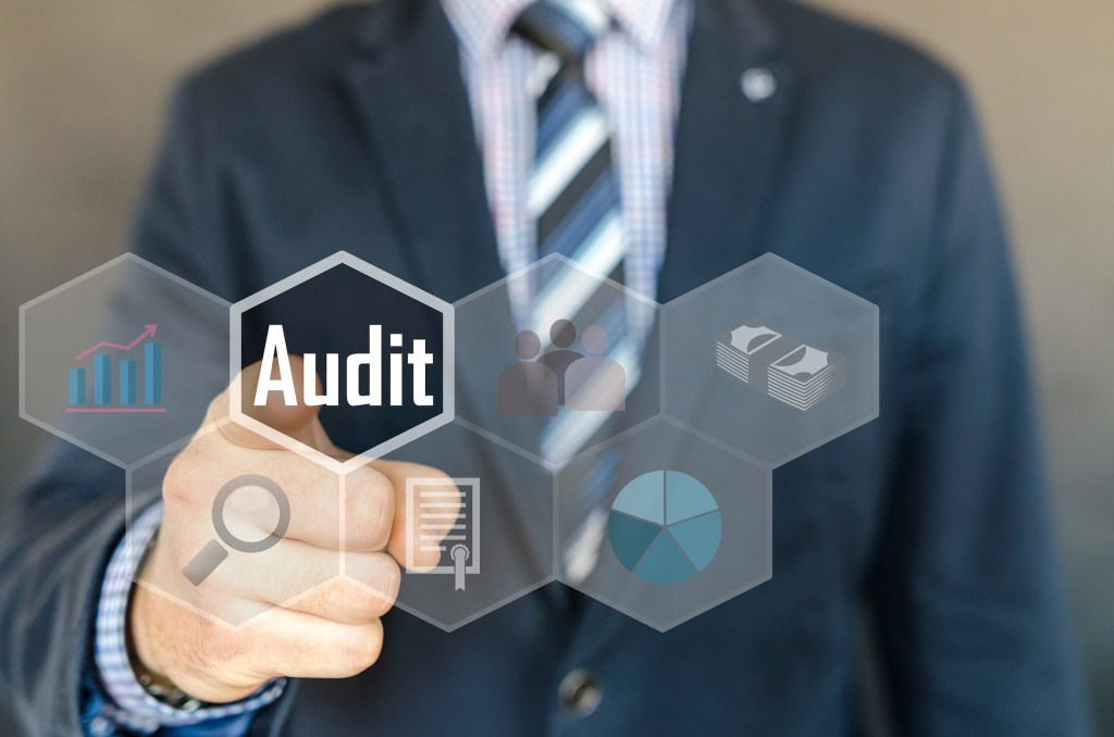 Use our accounting services and audit as business development opportunities.