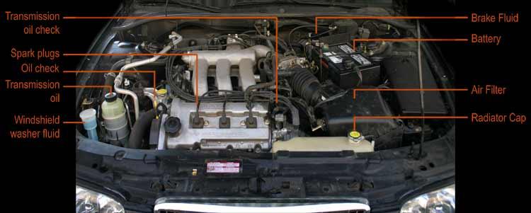car hood engine diagram cb mic wiring diagrams 19 stromoeko de automobile under the inspection rh paulorenato com parts design
