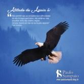 atitude de águia_135