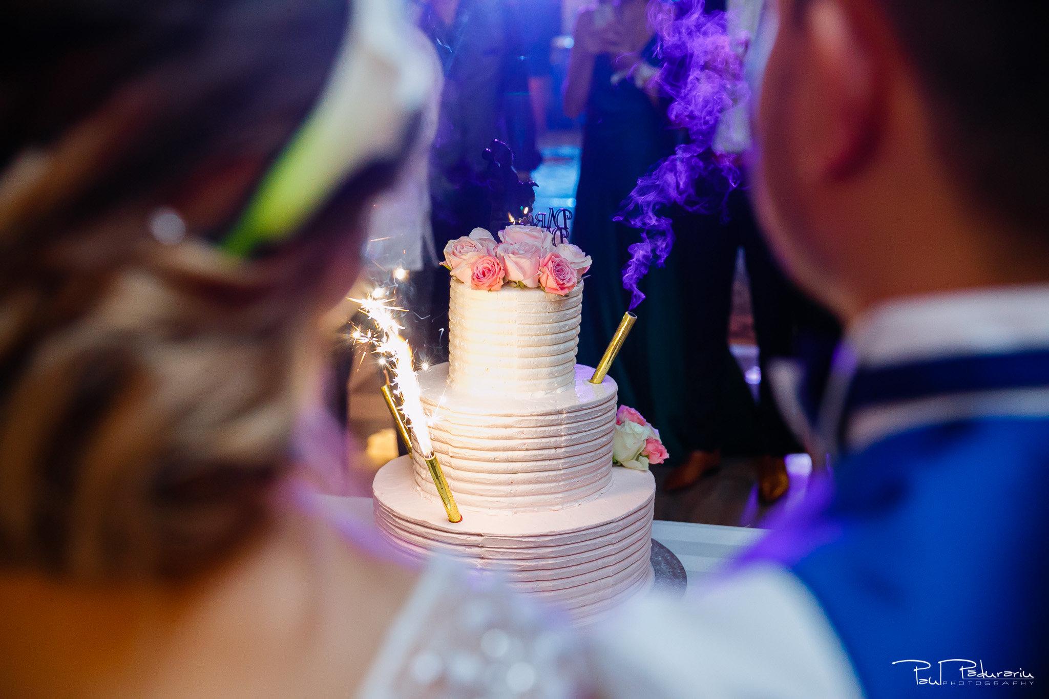 Petrecere la Pleaiada nunta cu tema Paris Ema si Tudor fotograf profesionist de nunta iasi www.paulpadurariu.ro © 2017 Paul Padurariu - Tort miri - Cofetaria Blanca