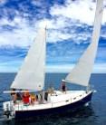 Under sail (by Robert Ayliffe)