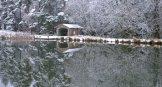 canoe-shed