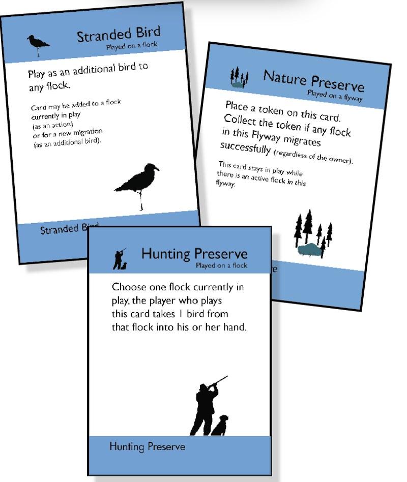 Flocks & Flyways card 03