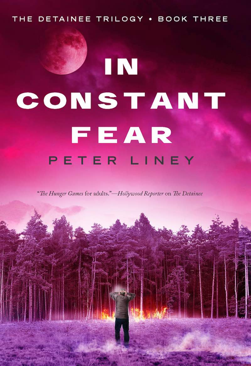 Peter Liney The Detainee Into The Fire In Constant Fear ICF cover
