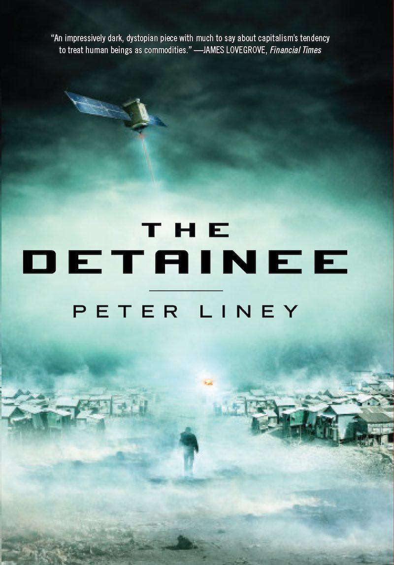Peter Liney The Detainee Into The Fire In Constant Fear TD cover
