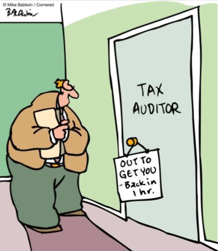 tax-auditor