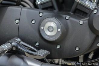 2016 Harley Davidson Iron 883 WM -20