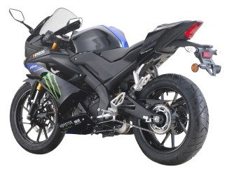 2019 Yamaha YZF-R15 Monster Limited Edition -6