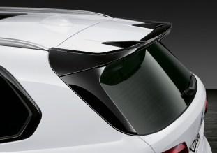 BMW F95 X5 M M Performance-1