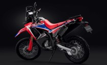 Honda CRF250 Rally 2021-4