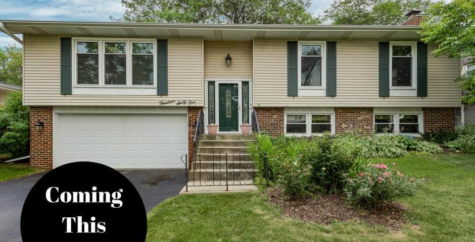 1461 Brunette Dr Downers Grove il real estate agent
