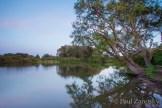 2013_04_28Antonelli_Pond 127