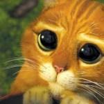 Antonio Banderas repite en 'El Gato con Botas 2'