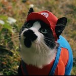 La historia de Mario contada con gatos se llama Super Mario Cat Bros.