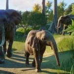 Planet Zoo estrena trailer para celebrar su beta