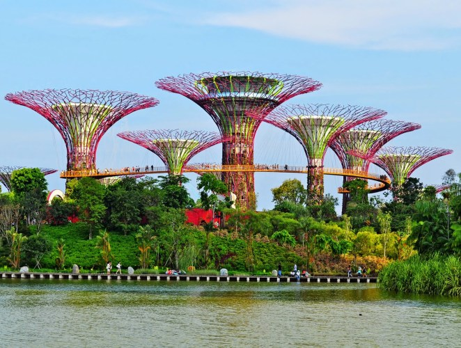 Gardens by the Bay of Singapour