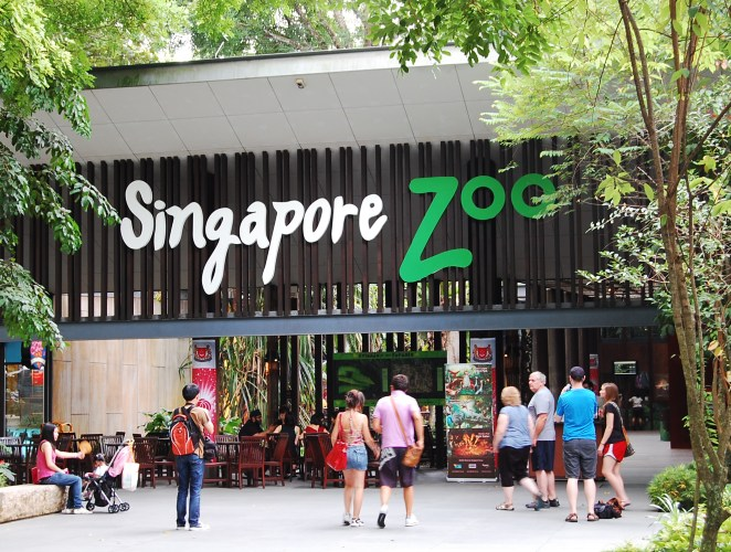 Zoological Garden of Singapour