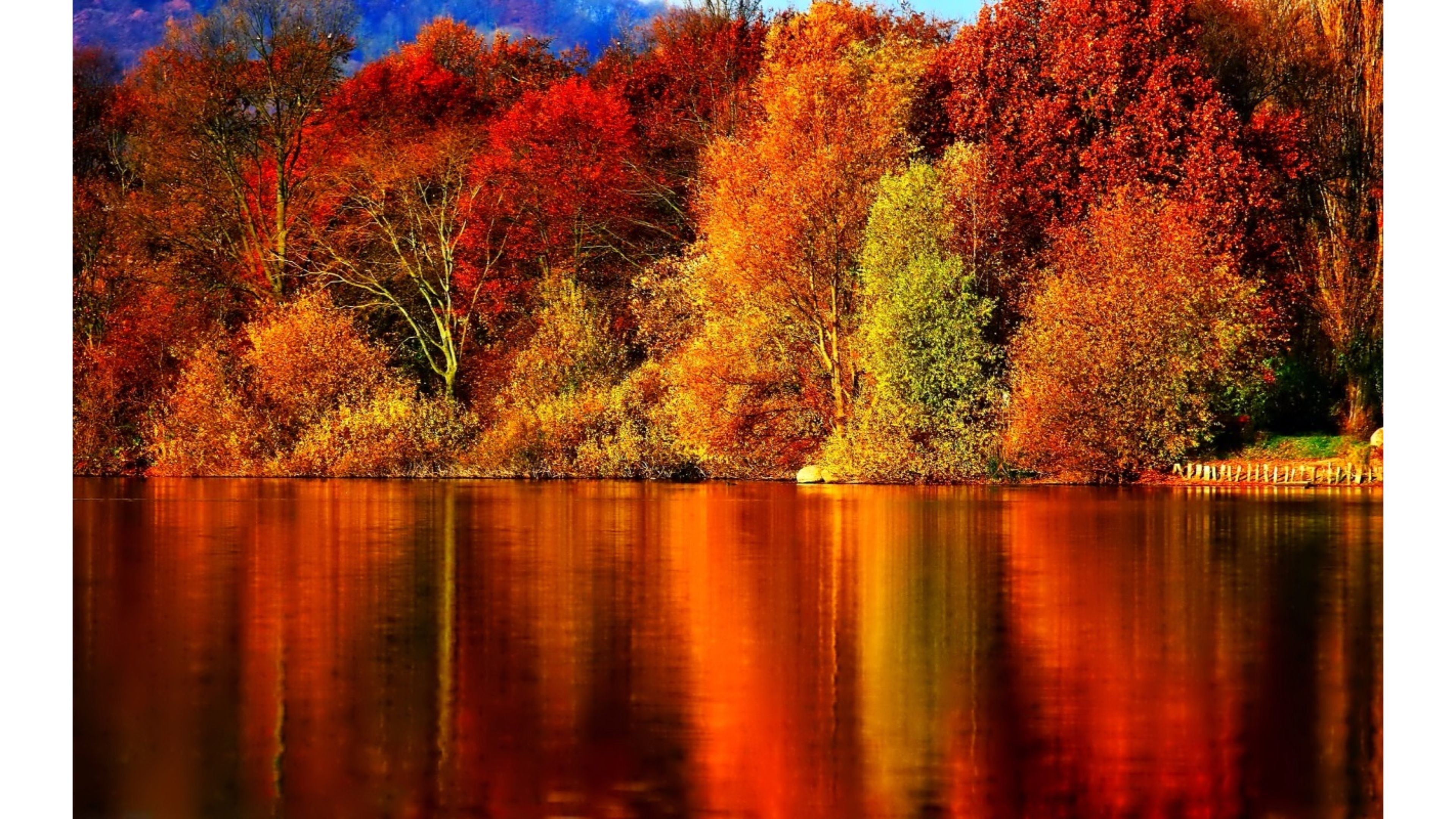 Fall Harvest Iphone Wallpaper Fall Pics Wallpapers 71 Background Pictures