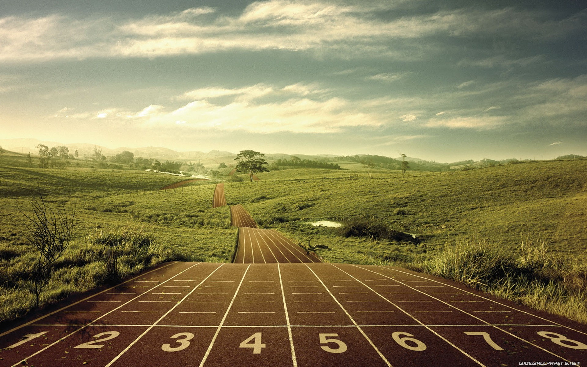 sports wallpapers 78 background