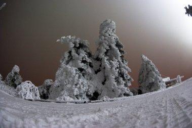 Заснеженные ели на вершине Машука