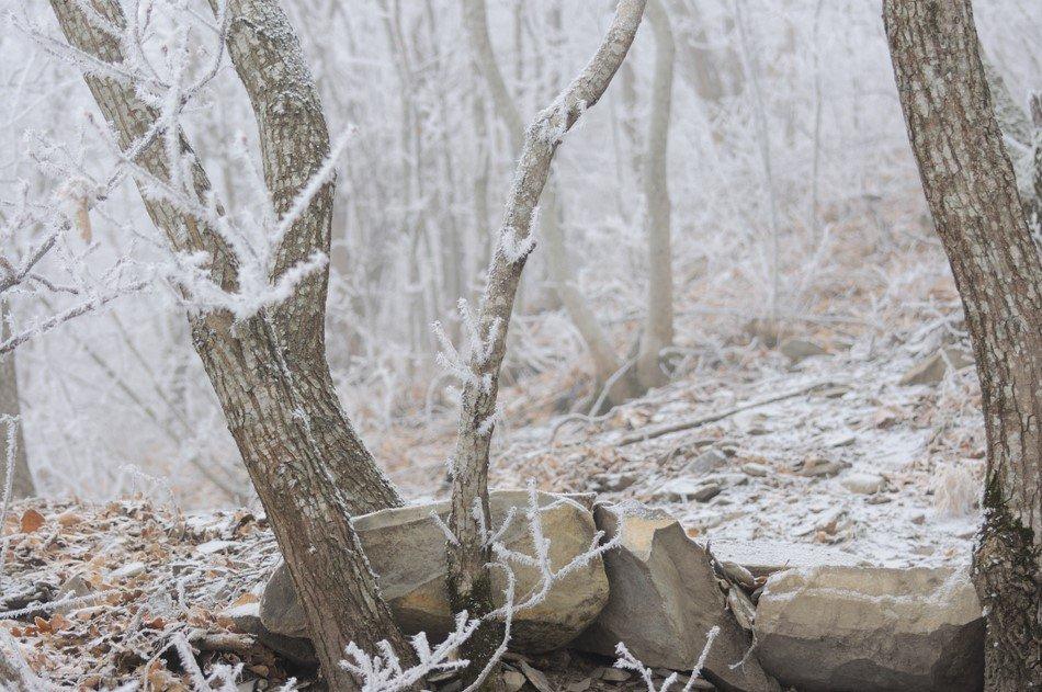 Зима на Машуке