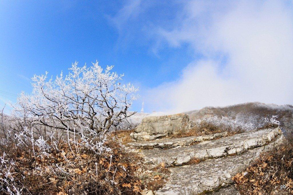 Зимние фотографии Машука вдоль канатки