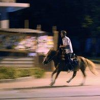 Лошадка скачет по Пятигорску