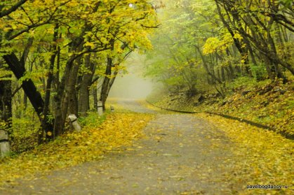 autumn-pyatigorsk-10