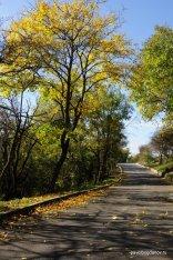 autumn-pyatigorsk-14
