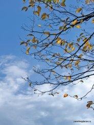 autumn-pyatigorsk-3
