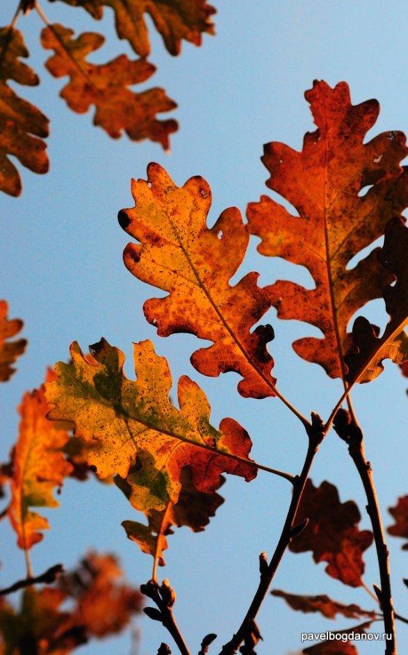 autumn-pyatigorsk-30