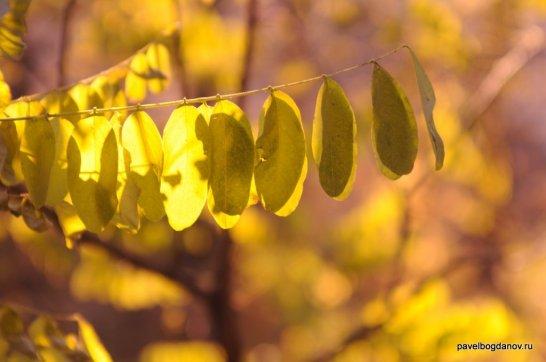 autumn-pyatigorsk-35