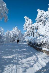 winter-pyatigorsk-9