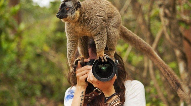 НЕ рациональные советы по выбору фотоаппарата!
