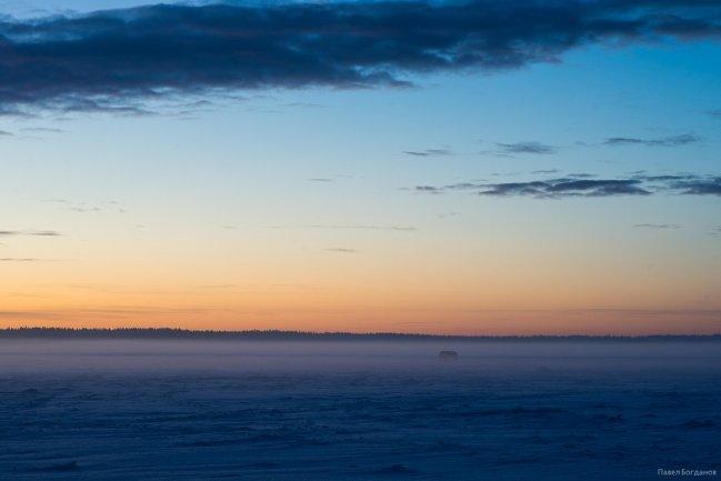Кавголовской озеро зимой