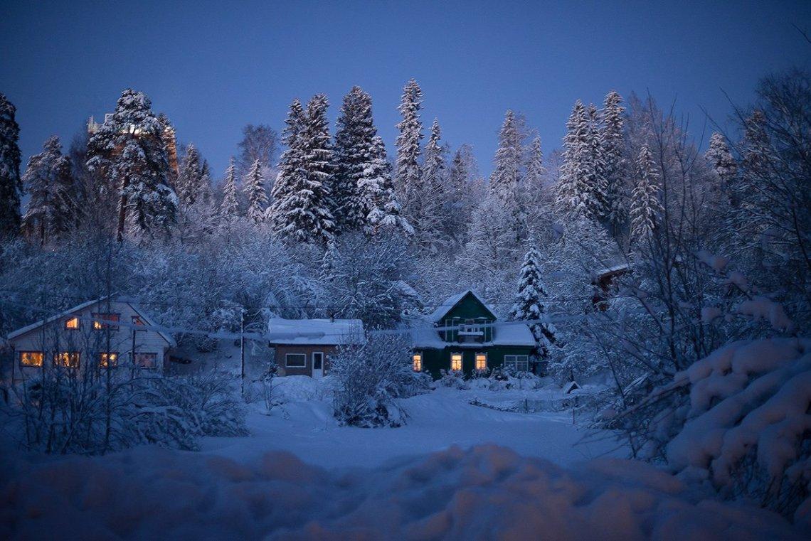 Домик в Кавголовском лесу