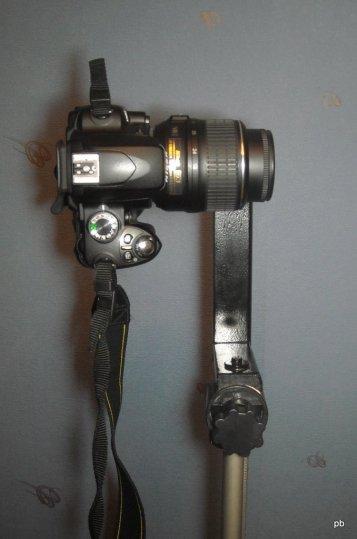 DSCN6685
