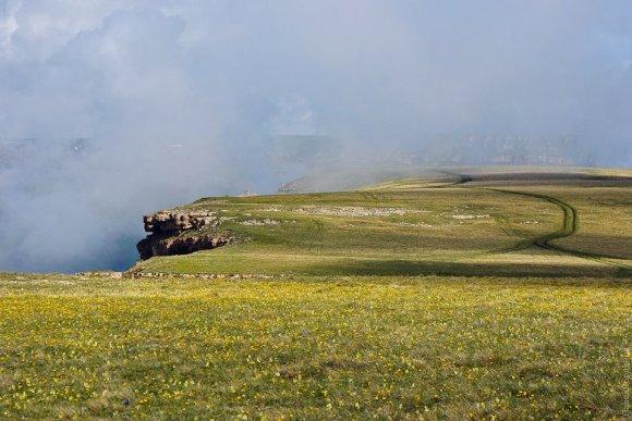 Альпийский луг Бермамыта