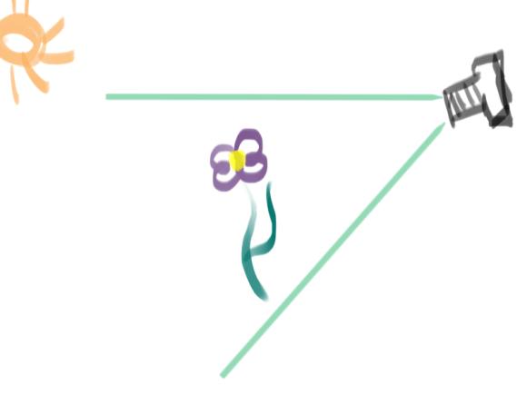 Как фотографировать цветы в каплях