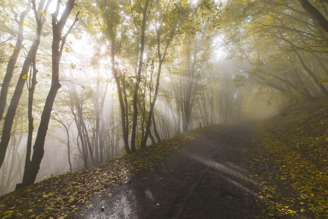 Осенняя дорога на вершину Машука