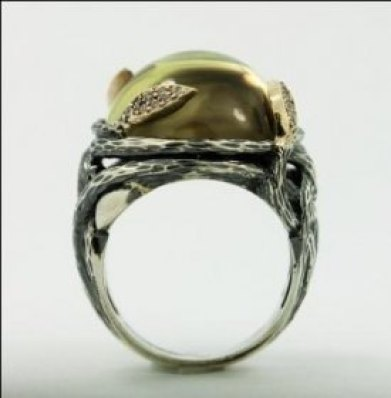 Enchanted Forest Ring3