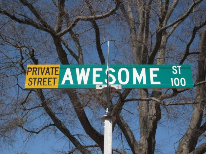 A Street Called Awesome. CC by moonlightbulb on flickr.